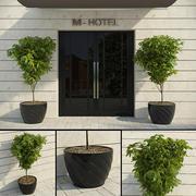 Modern Decorative Tree 3d model