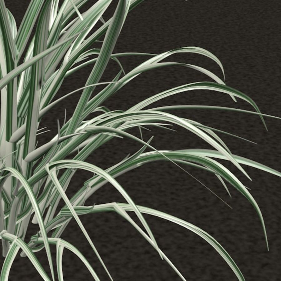 Grass royalty-free 3d model - Preview no. 4
