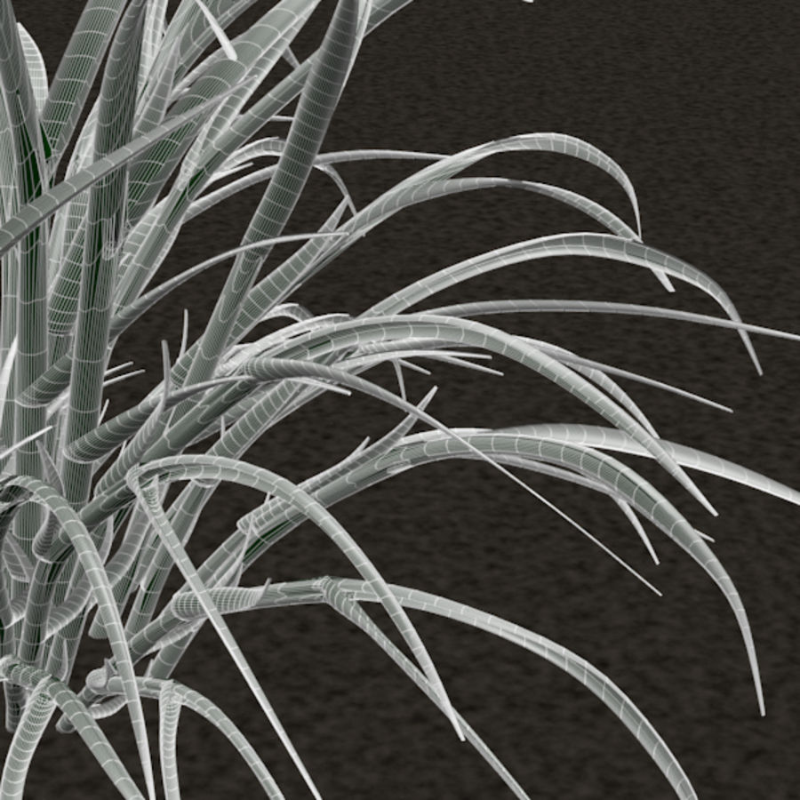 Grass royalty-free 3d model - Preview no. 6