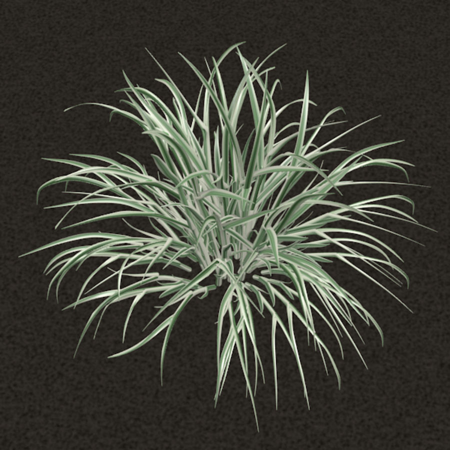 Grass royalty-free 3d model - Preview no. 3