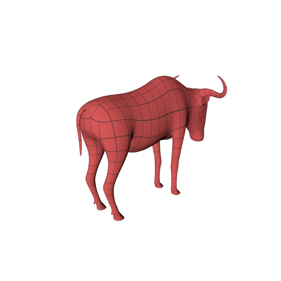 Wildebeest-gnu base mesh royalty-free 3d model - Preview no. 6