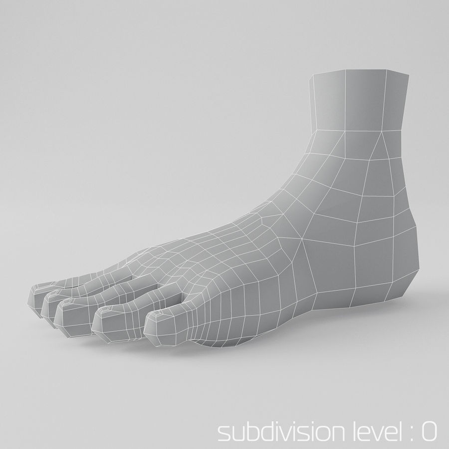 Foot royalty-free 3d model - Preview no. 3