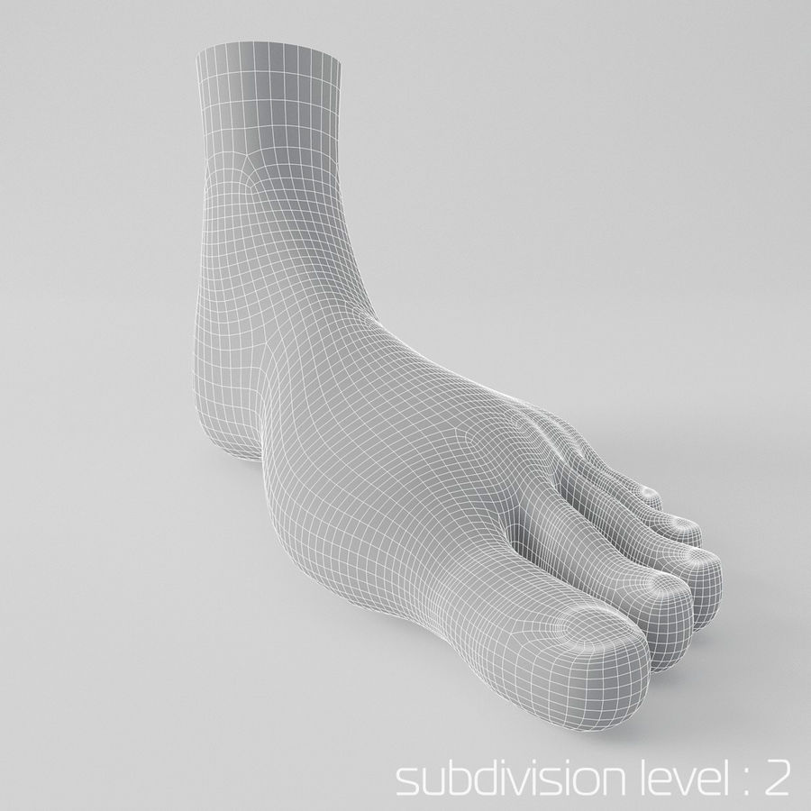 Foot royalty-free 3d model - Preview no. 9
