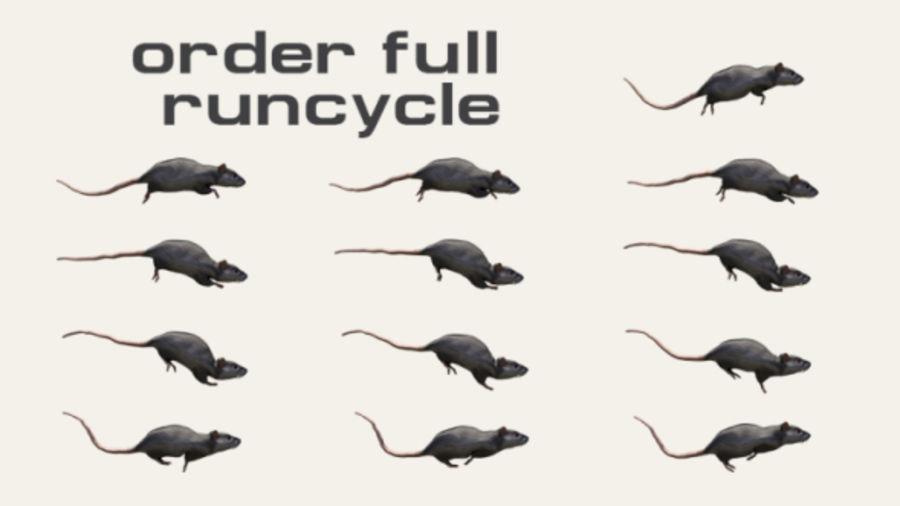 Rat royalty-free 3d model - Preview no. 12