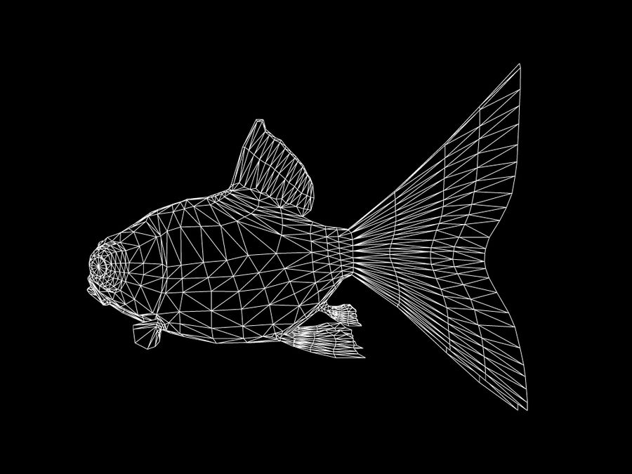 Gold fish royalty-free 3d model - Preview no. 5