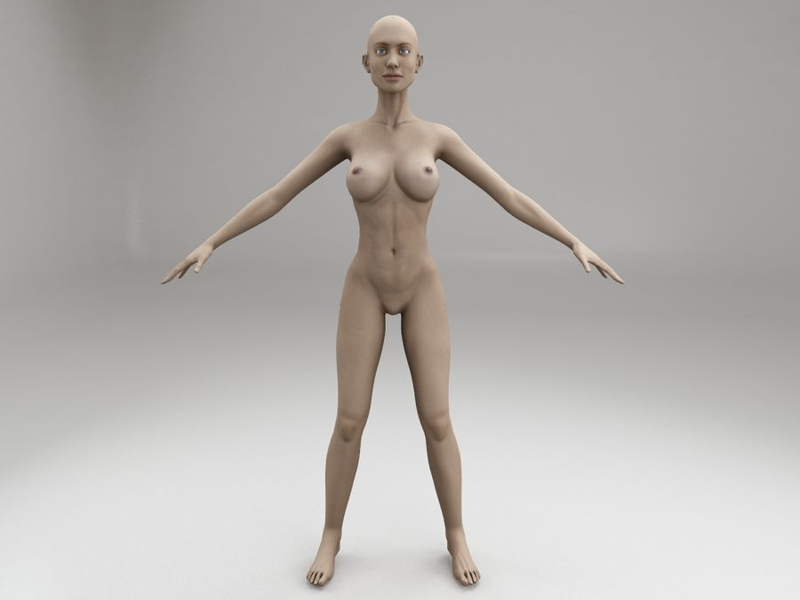 女性の体格 royalty-free 3d model - Preview no. 6