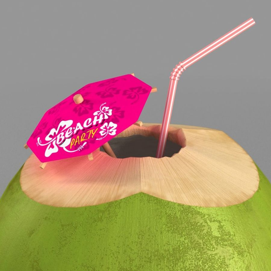 coconut royalty-free 3d model - Preview no. 4