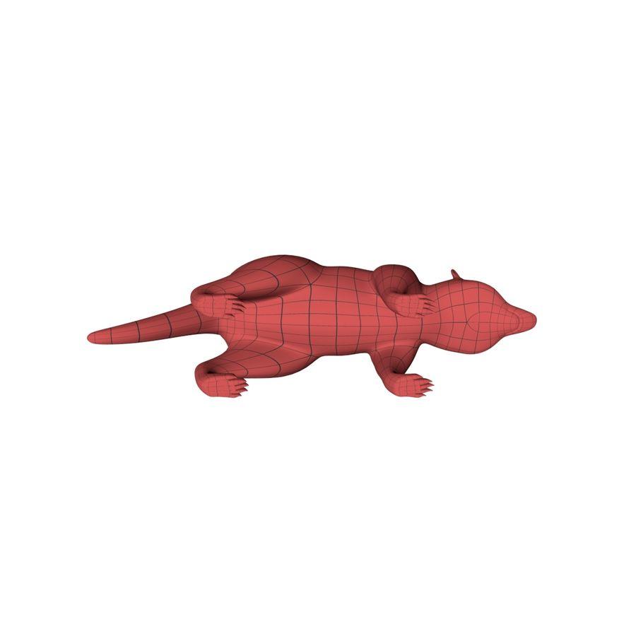 Raccoon base mesh royalty-free 3d model - Preview no. 5