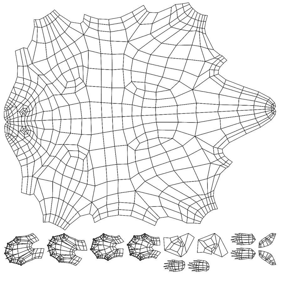 Raccoon base mesh royalty-free 3d model - Preview no. 7