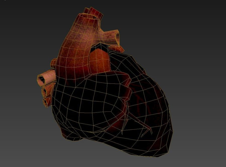 Human Heart royalty-free 3d model - Preview no. 6