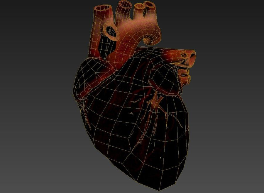 Human Heart royalty-free 3d model - Preview no. 7