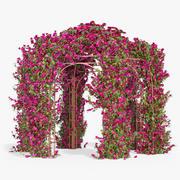 Pergola Bougainvillea With Flowers Ivy Hexagonal 3d model