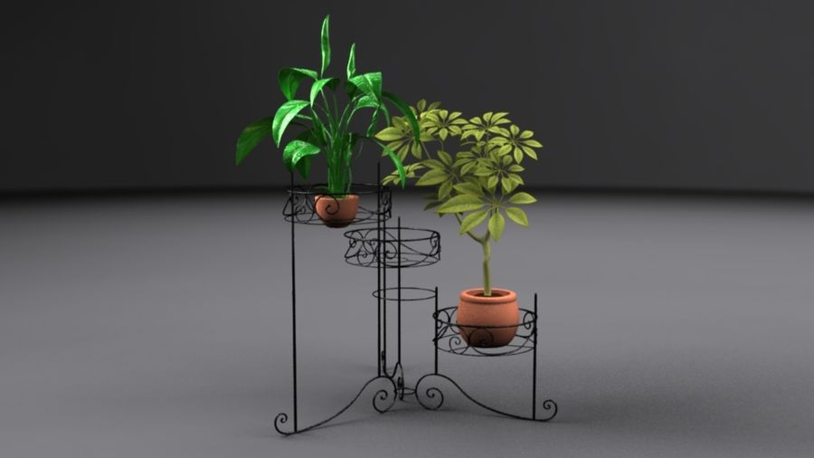 House plants royalty-free 3d model - Preview no. 3