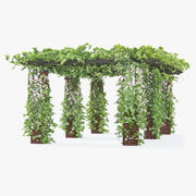 Climbing Roses Pergola With Flowers Ivy Long 3d model