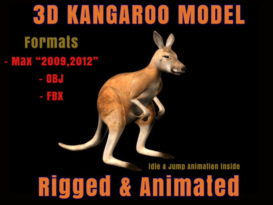 Canguro 3D Modello Rigged Animato royalty-free 3d model - Preview no. 1