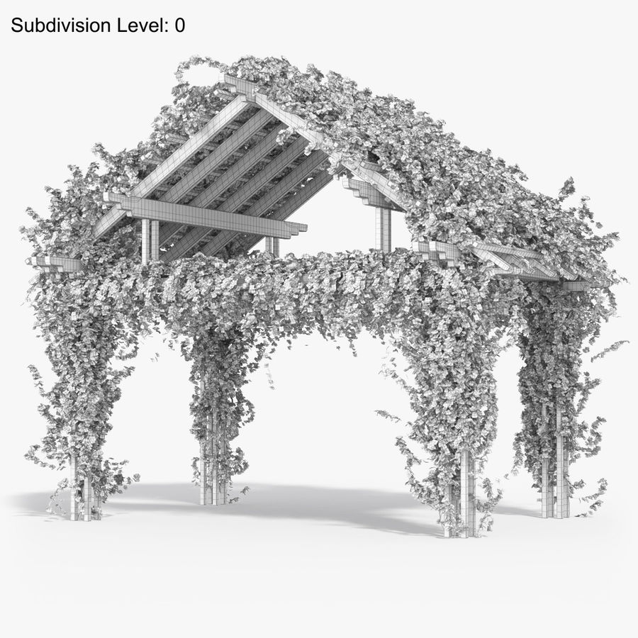 Pergola Climbing Roses With Flowers Ivy Wooden royalty-free 3d model - Preview no. 13