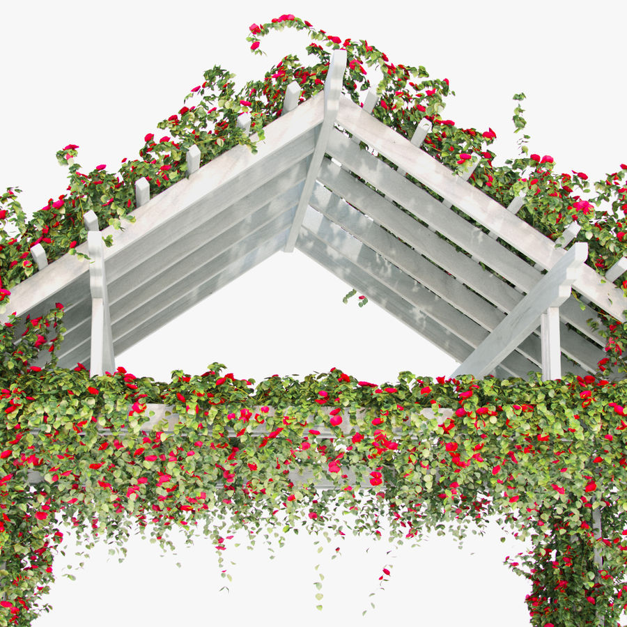 Pergola Climbing Roses With Flowers Ivy Wooden royalty-free 3d model - Preview no. 6