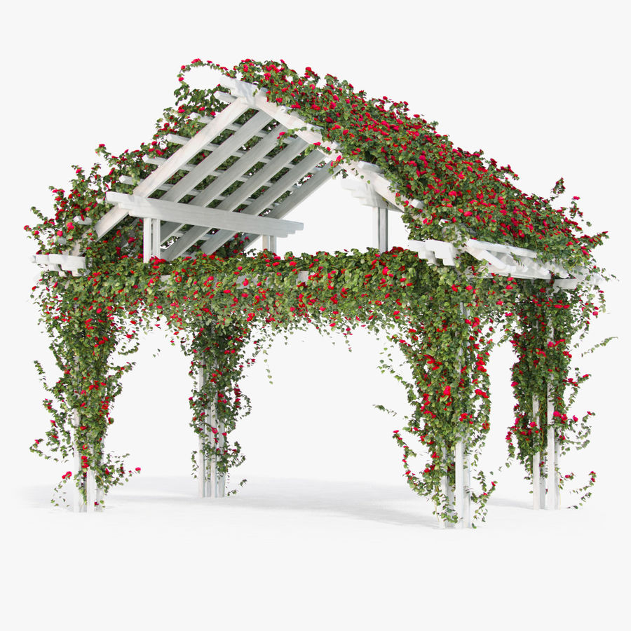 Pergola Climbing Roses With Flowers Ivy Wooden royalty-free 3d model - Preview no. 2