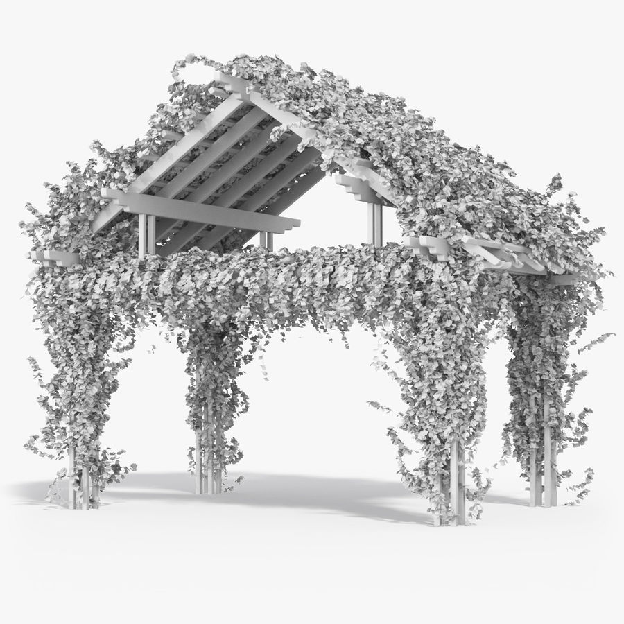 Pergola Climbing Roses With Flowers Ivy Wooden royalty-free 3d model - Preview no. 8