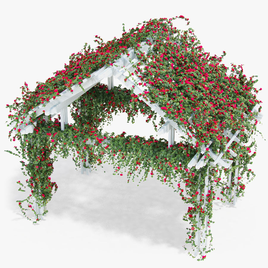 Pergola Climbing Roses With Flowers Ivy Wooden royalty-free 3d model - Preview no. 3