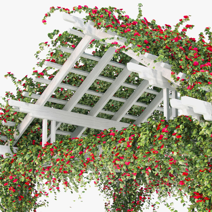 Pergola Climbing Roses With Flowers Ivy Wooden royalty-free 3d model - Preview no. 5