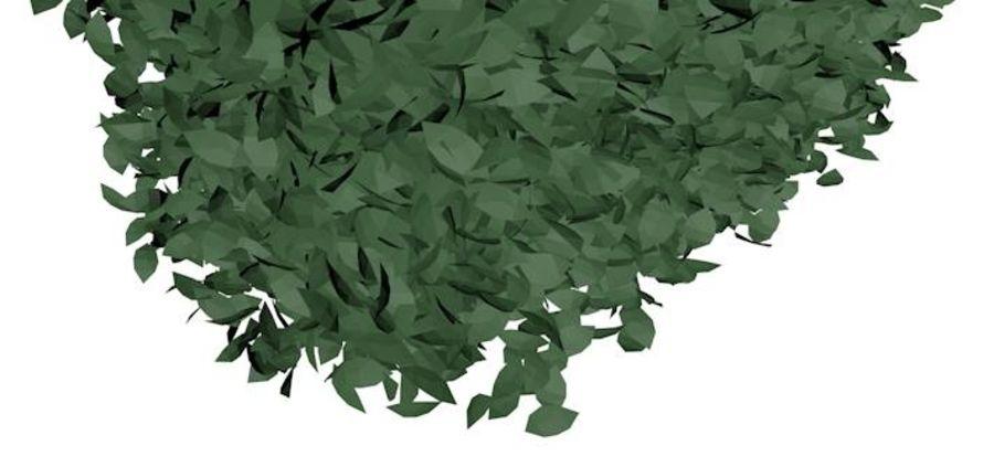 Shrub Bush royalty-free 3d model - Preview no. 4