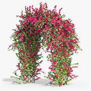 Pergola Bouganvillea Ivy With Flowers Arch 3d model