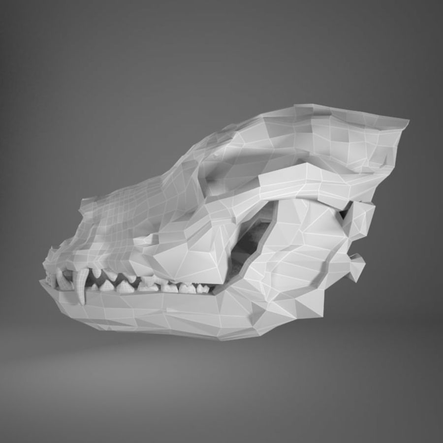 Dog skull royalty-free 3d model - Preview no. 1
