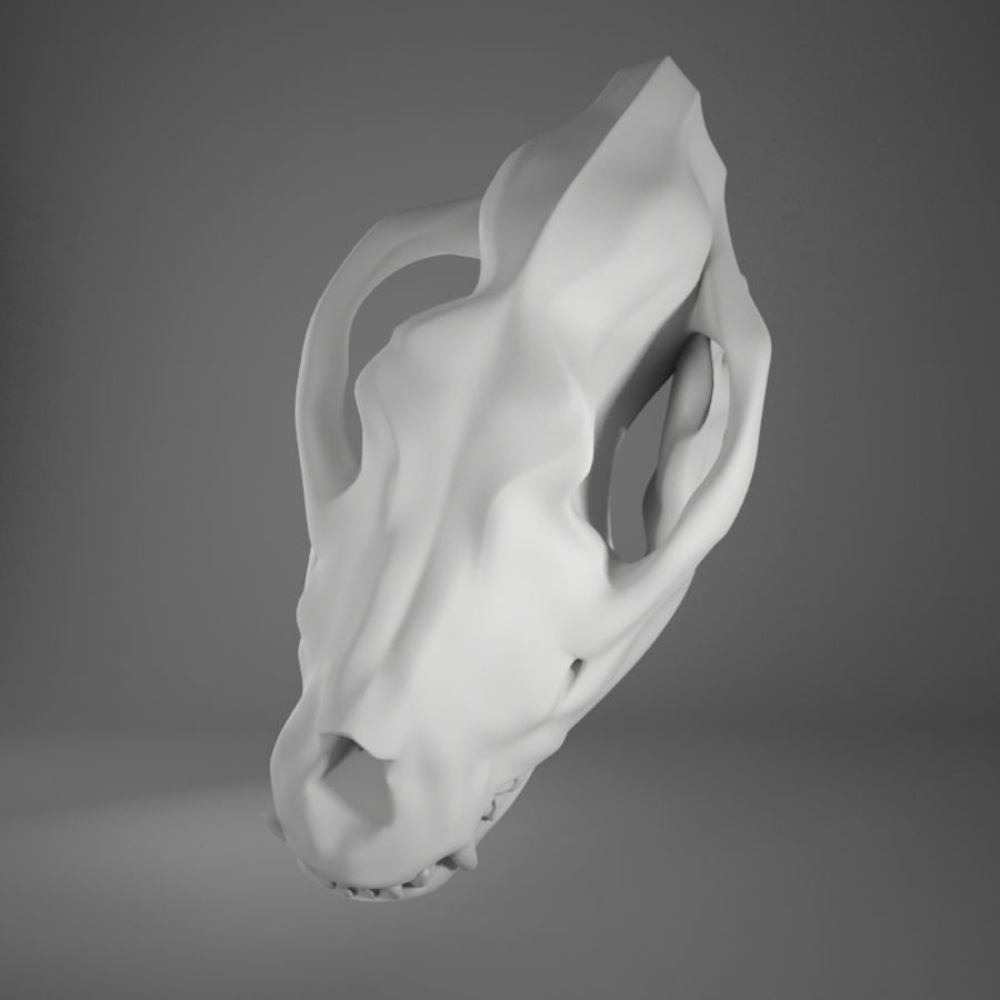 Dog skull royalty-free 3d model - Preview no. 9
