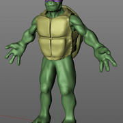 Turtle Man Ninja 3d model