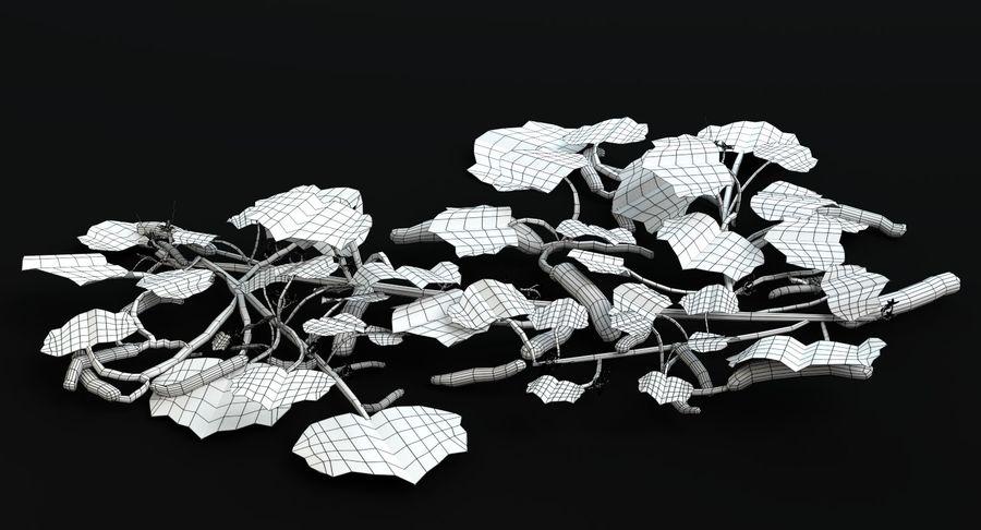 Plant de concombre royalty-free 3d model - Preview no. 12