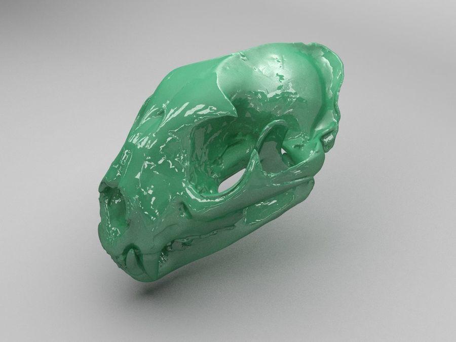 Crâne de lion de montagne royalty-free 3d model - Preview no. 1