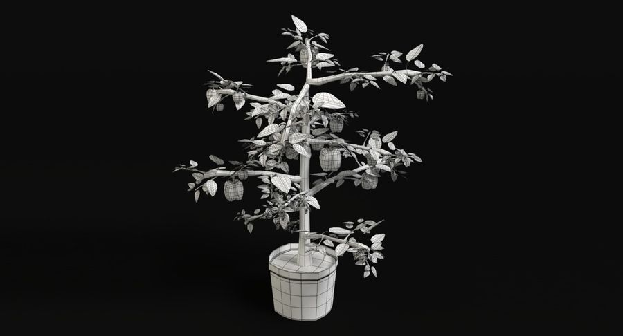 Bell Pepper Plant royalty-free 3d model - Preview no. 8
