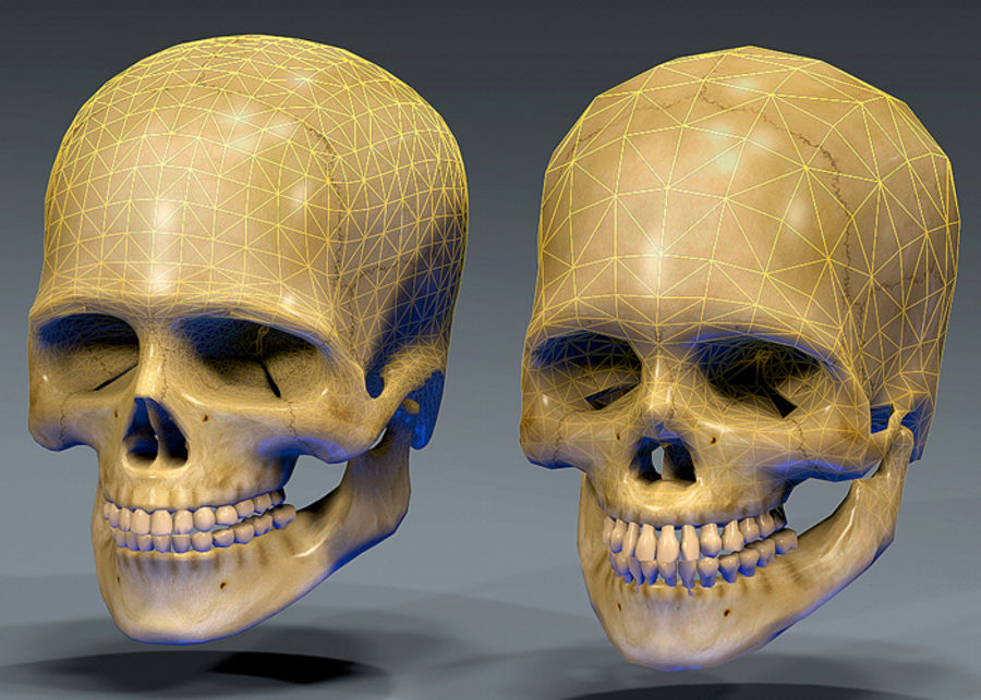 Skull Human Real Textured royalty-free 3d model - Preview no. 9