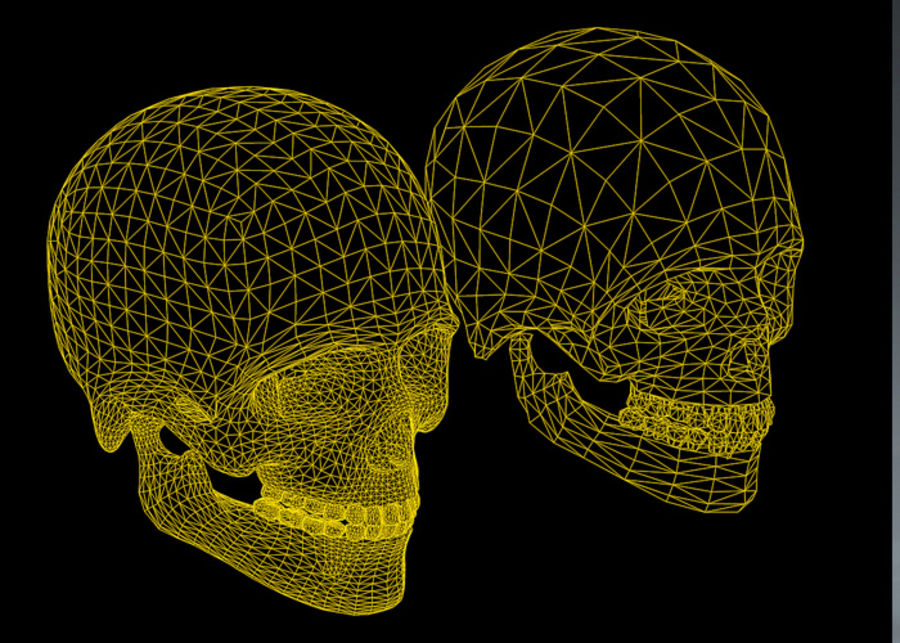 Skull Human Real Textured royalty-free 3d model - Preview no. 7