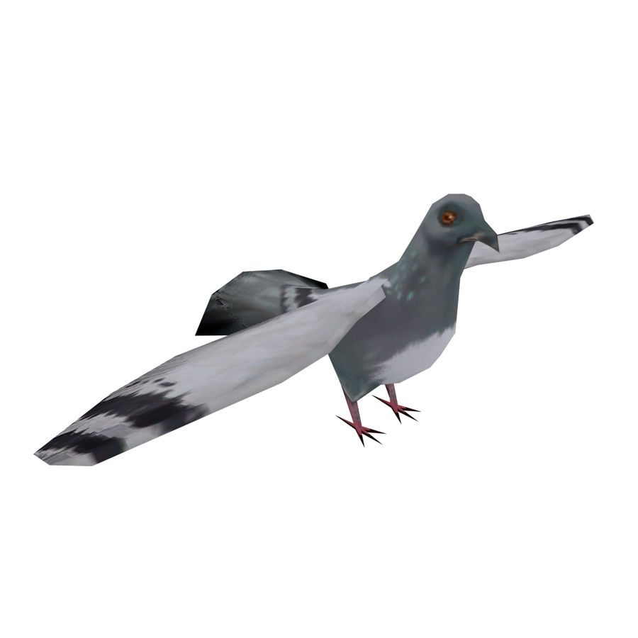 Lowpoly Pigeon royalty-free 3d model - Preview no. 1