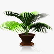 Domowy model rośliny 3d model