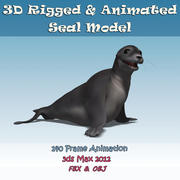 3D Seal Rigged Animated 3d model