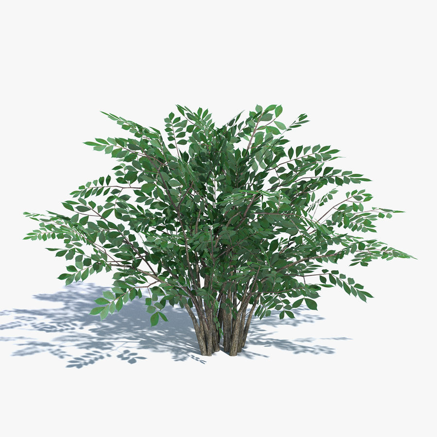 Low Poly Bush 3D Model $15 -  max  obj  fbx  dae  blend  3ds