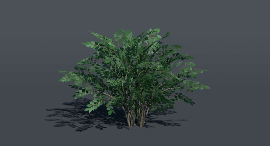 Low Poly Bush royalty-free 3d model - Preview no. 3