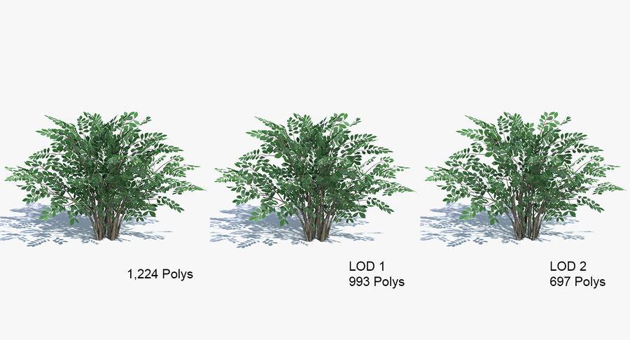 Low Poly Bush royalty-free 3d model - Preview no. 5