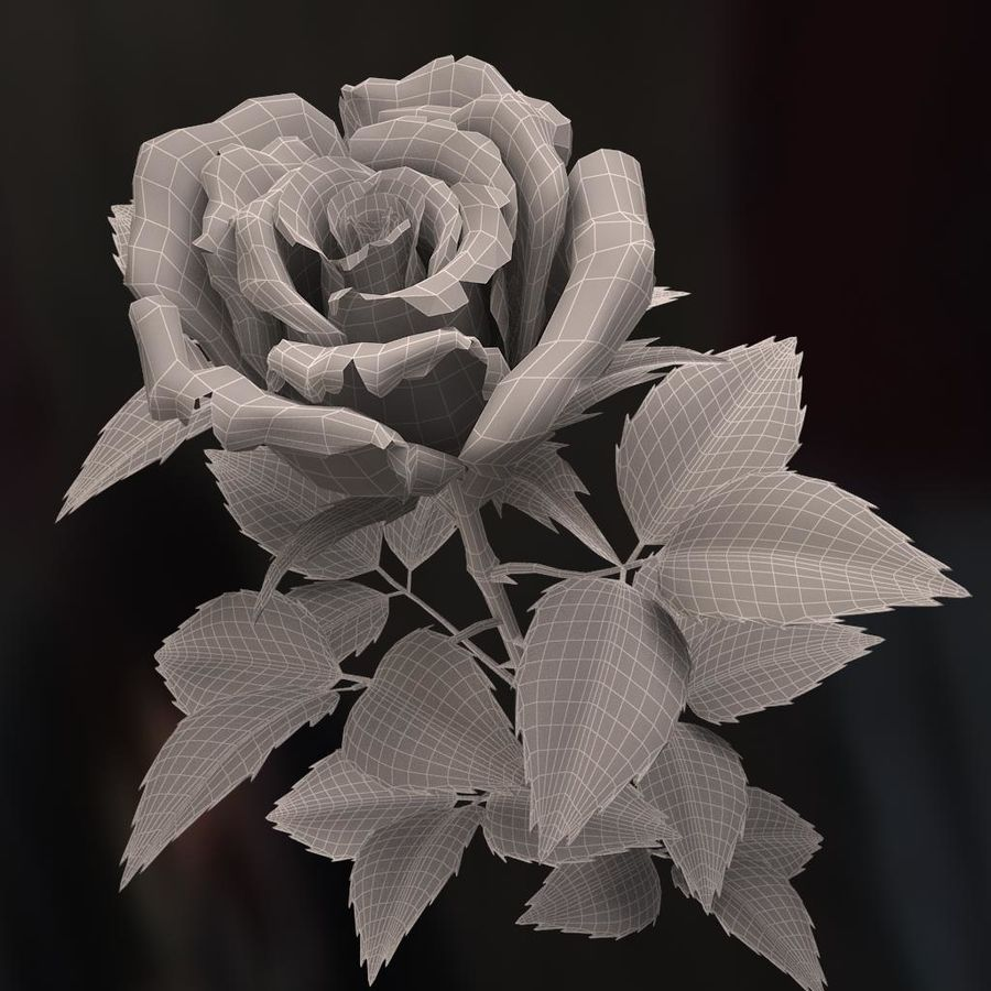 rose white royalty-free 3d model - Preview no. 13