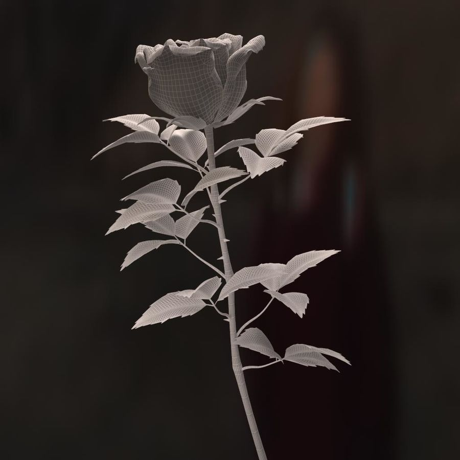 rose white royalty-free 3d model - Preview no. 16