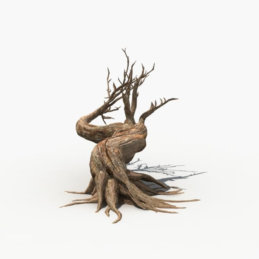 Árvore Seca 07 royalty-free 3d model - Preview no. 4