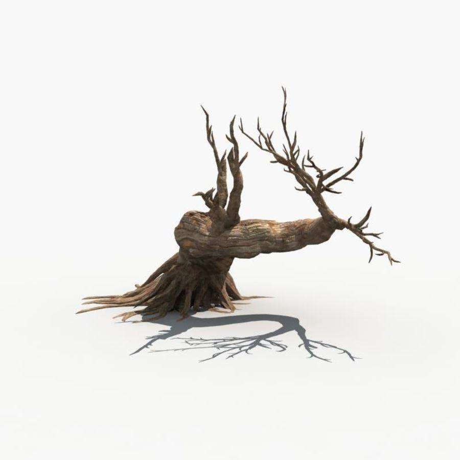 Árvore Seca 07 royalty-free 3d model - Preview no. 3