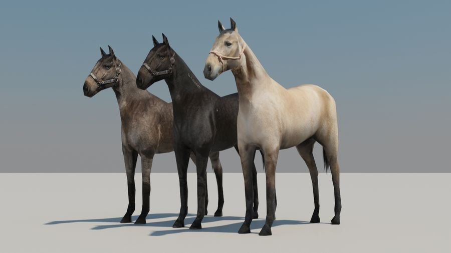 Horse royalty-free 3d model - Preview no. 6