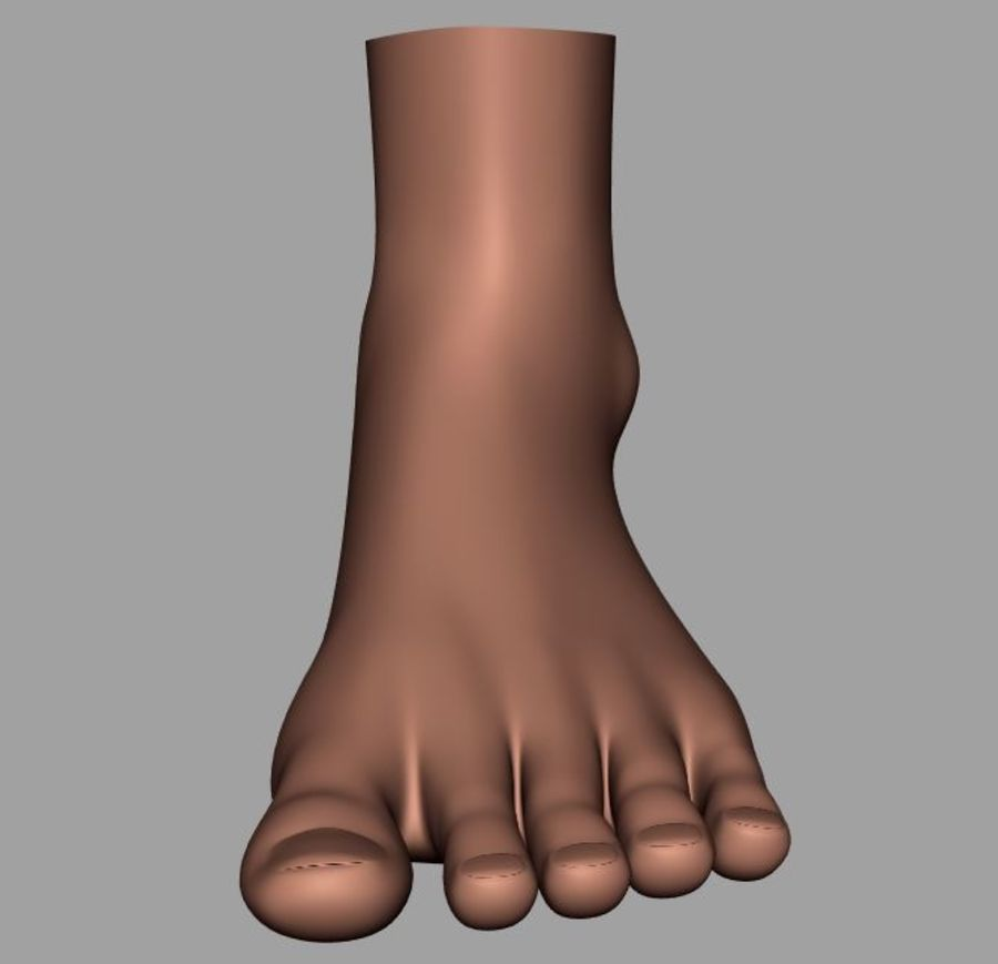 Pied masculin [maillage de base] royalty-free 3d model - Preview no. 11