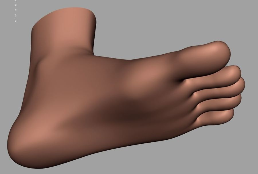 Pied masculin [maillage de base] royalty-free 3d model - Preview no. 10