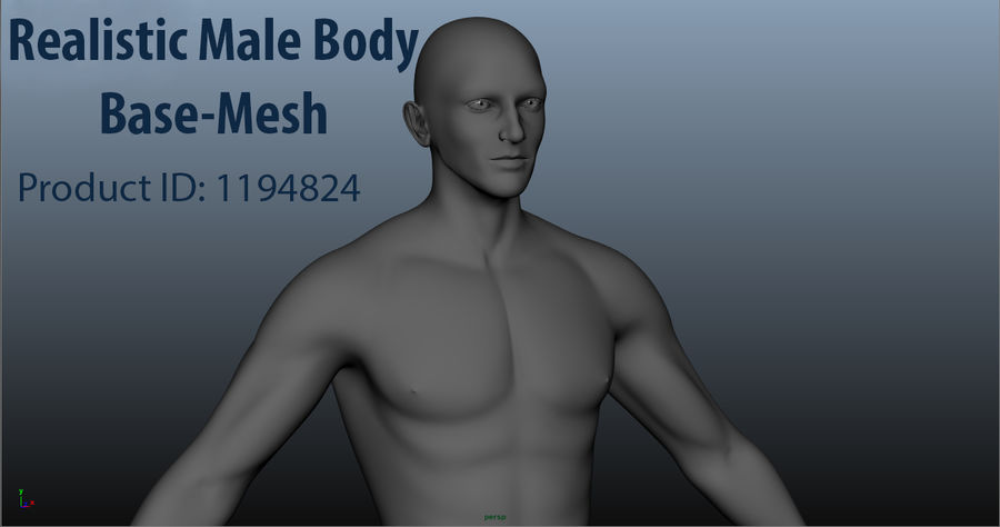 Pied masculin [maillage de base] royalty-free 3d model - Preview no. 5