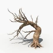 Suche drzewo 04 3d model